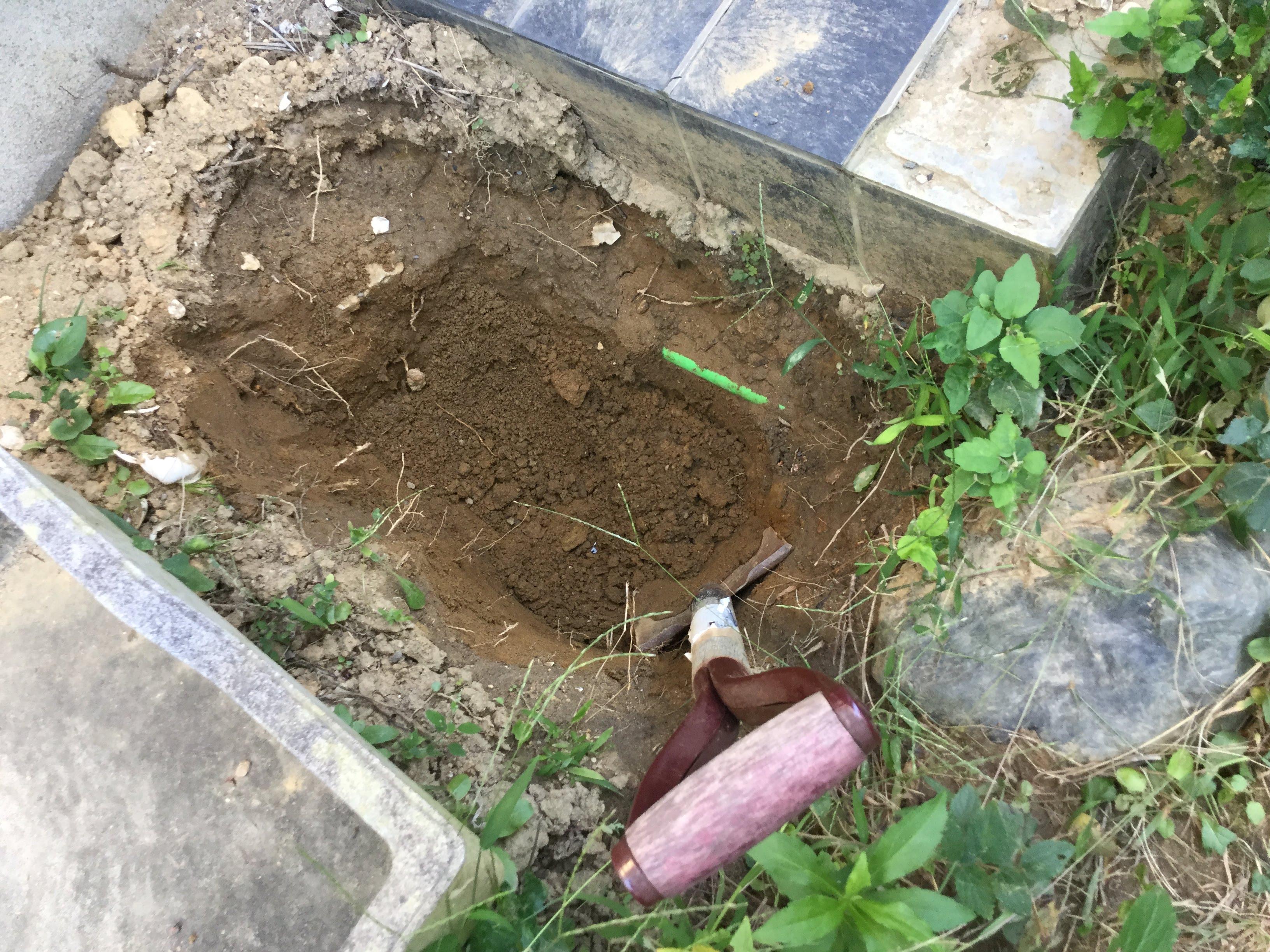 庭のバラ用穴